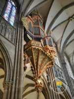 orgue-nid-strasbourg