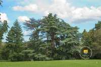 parc-bourgogne