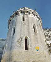 tour-des-minimes-amboise-castle