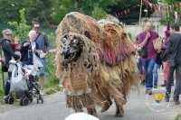 compagnie-via-cane-chameau-dromadaire-monstre