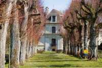 allee-chateau