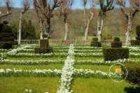 jardin-fleuri-ambleville