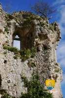 escalier-colimacon-ruine