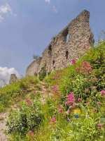 chapelle-chateau-gaillard-fleurs