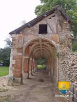 ruine-cloitre