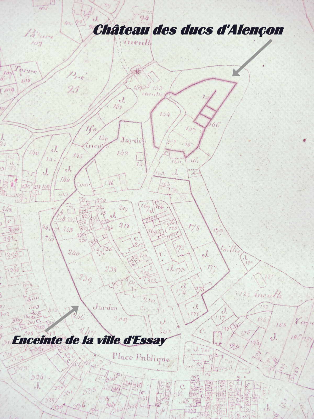 chateau fortifications Essay Orne