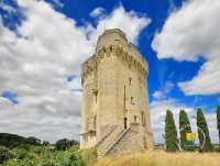 chateau-donjon-treves