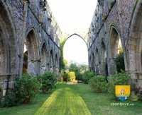 ruines-abbaye-beauport