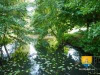 loir-riviere