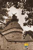 moulin-detruit--haut-koenisbourg