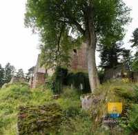 chateau-birkenfels-DSC04992_DSC04997-6