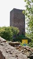 eguisheim-trois-chateaux-DSC06281-7