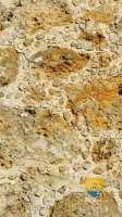 montceaux-les-meaux-pierre-eglise-7