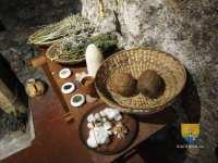 tour-jean-peur-plantes-medicinales-moyen-age-13