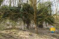 reste-ancienne-forteresse